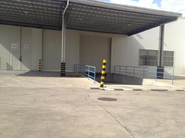 浦东带有下沉式卸货平台的仓库 单层图片